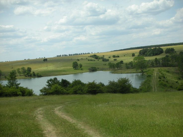 Terrain agricole d'une surface de 10 999 m²:  Terrain tout proche d'un lac (en hauteur), à 20 km de bord de mer et de la ville de Varna, à 25 km d'un aéroport international.  Le terrain n'est pas régulé.  Vue dégagée. Proche du lac de Nikolaevka.