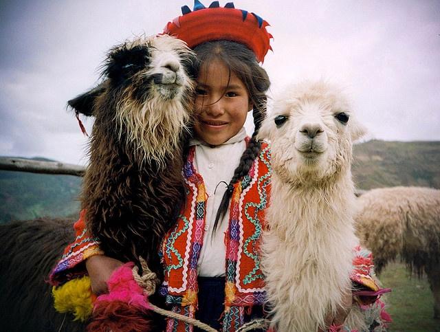 Peru, Llama,Cusco by hamez cassap, via Flickr