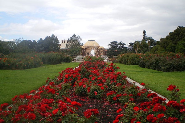 The famous 7-acre Rose Garden at Exposition Park near the California Science Center