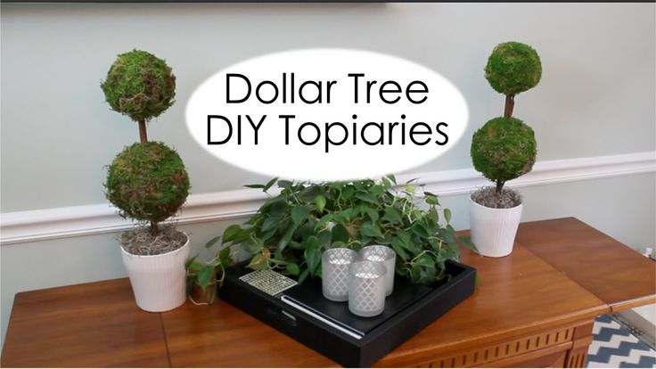 DIY Dollar Tree Topiaries These DIY Dollar Tree Topiaries were inspired by Pottery Barn's $60 Topiaries. These can be made for $10 each and look just as good. Check out the video below: And don't forget to Like and Share!