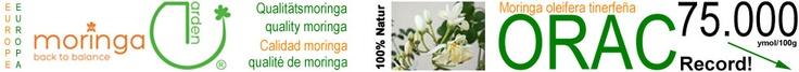 Weltrekord-Pflanze der Superlative  Moringa ist die Pflanze der Superlative und nichts weniger als die vitaminreichste Pflanze auf Erden. Moringa-Blattpulver von Bio-Moringas enthält doppelt so viel hochwertiges Eiweiß wie Soja, sieben Mal so viel Vitamin C wie Orangen, vier Mal so viel Vitamin A wie Karotten, 17 Mal so viel Kalzium wie Milch, 25 Mal so viel Eisen wie Spinat, 15 Mal so viel Kalium wie Bananen, sieben Mal so viel Vitamin B1 und B2 wie Hefe, sechs Mal so viele Polyphenole…