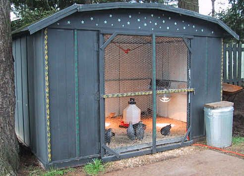 Chicken coop made out of an old shed.