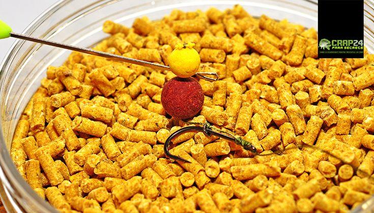 """Momeli mici pentru crapi mari - crap24.ro: """"O strategie foarte potrivită pentru pescuitul """"capturilor de toamnă"""" (și nu numai), ar fi un pescuit izolat, cu momeli nu foarte mari, flotabile și...""""  Detalii AICI >>> http://www.crap24.ro/momeli-mici-pentru-crapi-mari/"""
