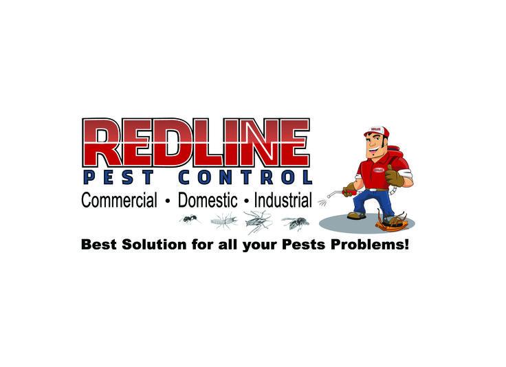 custom logo design pest control with character design as well logo design pinterest a well logos and custom logos