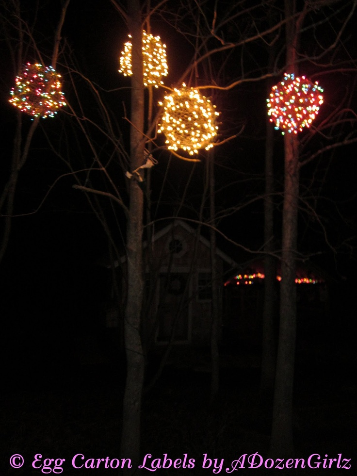 Chicken Wire, Lighted Christmas Balls. 'Tis the Season