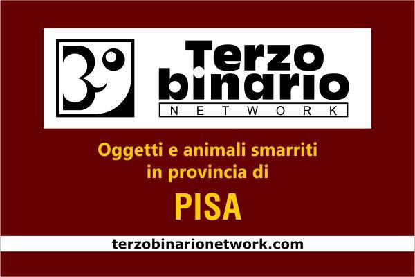 Oggetti e animali smarriti in provincia di Pisa