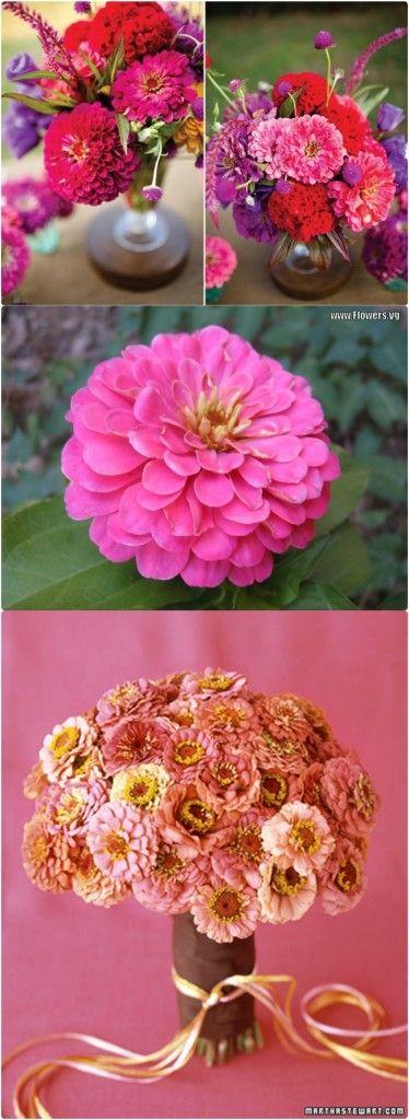 Zinnia makes very cute autumn wedding flower