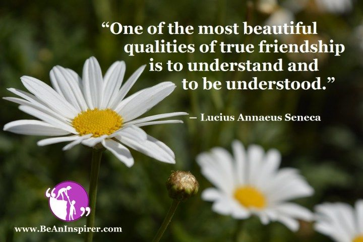 To Understand and to be Understood: the Core Principle of True Friendship: Article on #Friendship #Pin_It