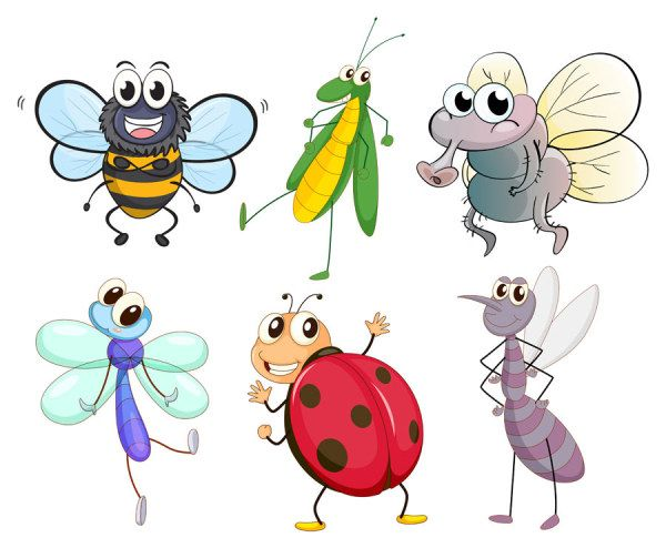 Funny Cartoon Insects vector set 08 - Vector Animal free download