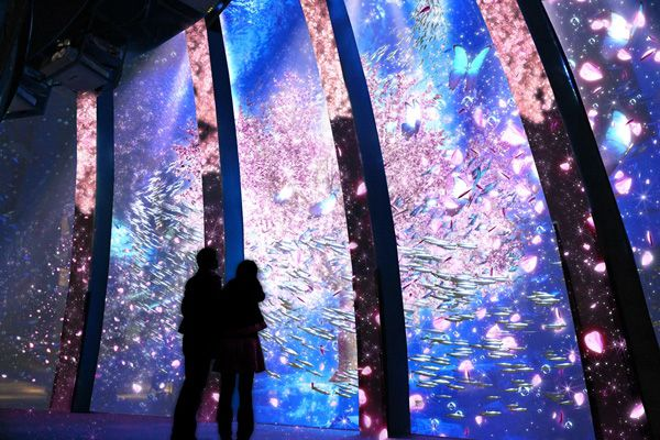 横浜・八景島シーパラダイスが「楽園のアクアリウム」開催 - 最新技術で楽しむ幻想的な水族館 | ニュース - ファッションプレス