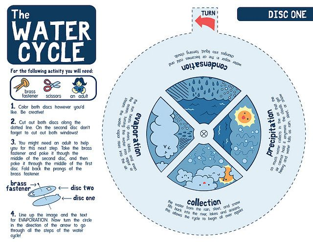 Water cycle - wheel (page 1) | 2nd Grade Science | Pinterest | Water ...