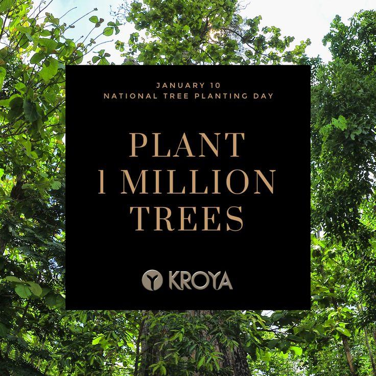 Celebrate Indonesia's National Tree Planting Day, January 10. #kroyafloors #forest #wwf  www.kroyafloors.com