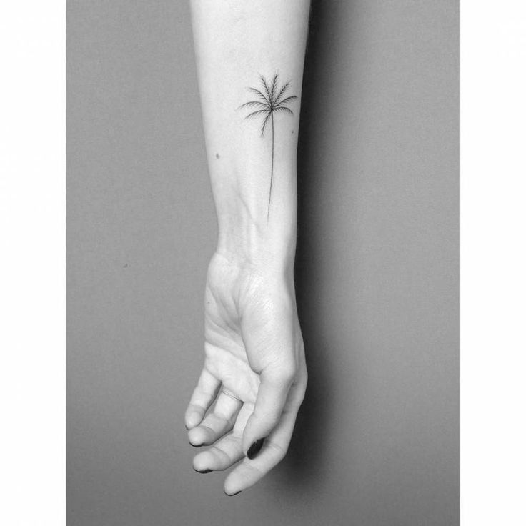 Hand poked palm tree tattoo on the inner forearm.