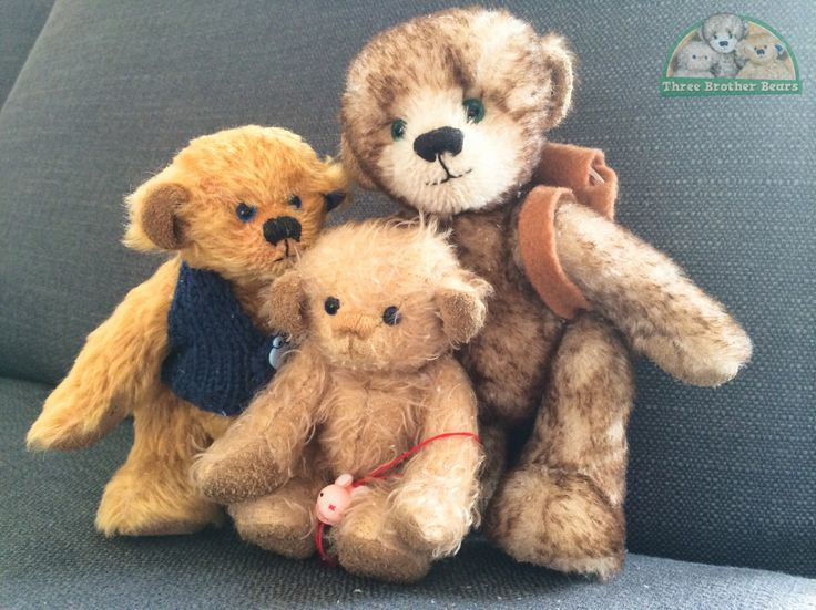 We're going on an Adventure! » Three Brother Bears