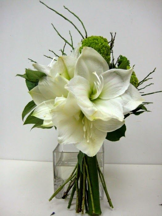 Amaryllis wedding flowers http://weddingflowersideas.blogspot.com/2014/05/amaryllis-wedding-flowers.html