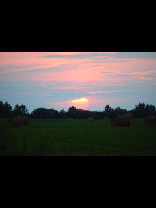 Hay Days | Capture Alberta Contest