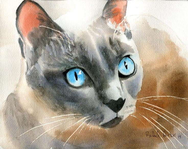 , Rachel Parker, chat artiste, chats tonkinois dans l'art