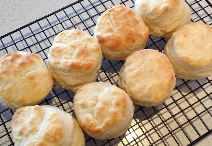 Easy Delicious Scones  Combine: 2 1/2 cups SR flour Tbsp icing sugar  Pinch salt   Make a well in the centre and add: 1 cup milk 30g melted butter   Mix with knife then kneed lightly on floured surface   Flatten dough to approx 3-4cm thick and cut 7cm circles  Brush with milk and bake 10mins @ 220*C  Makes 9