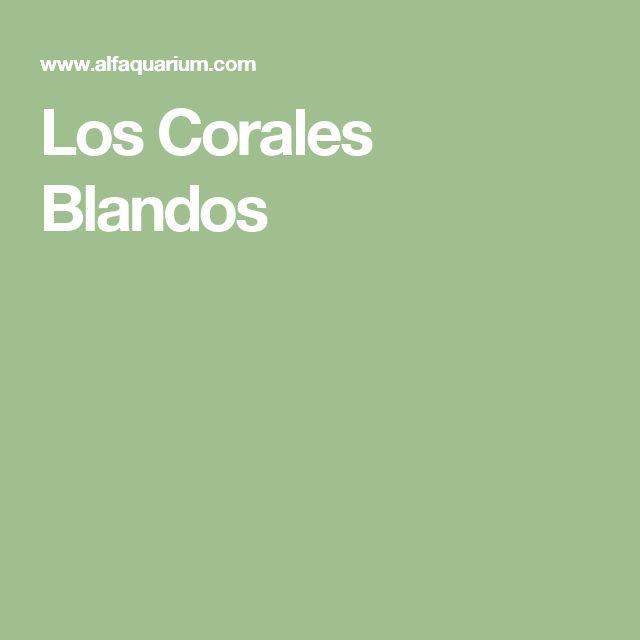 Los Corales Blandos