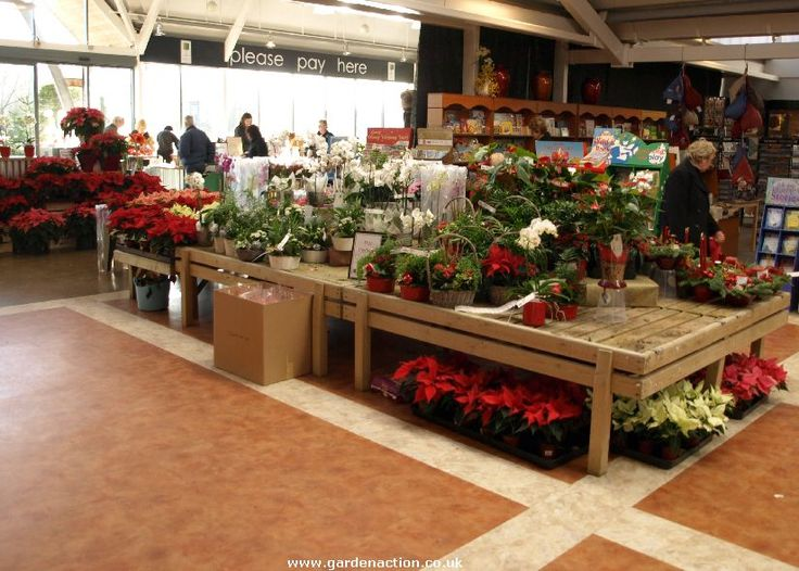 plant garden centre display tables - Google Search