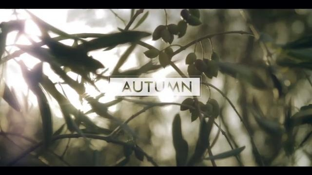 AUTUMN ~ LOAM by brecon littleford. Inspired by local produce, Chef Aaron Turner creates this seasons signature dish for Loam Restaurant.