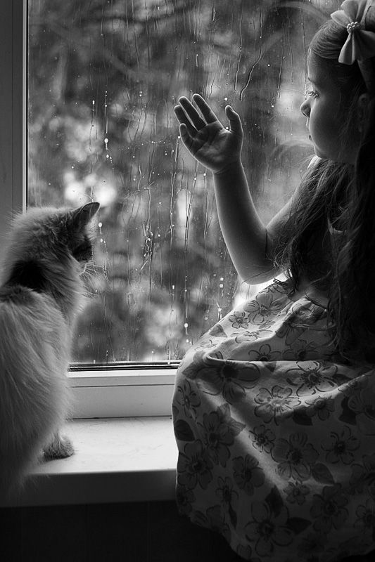 a lovely composition of the cat looking out a window at the raindrops with a sweet young girl is beautiful