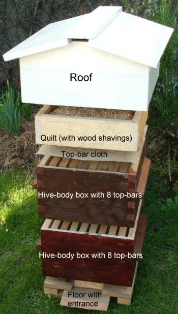How To Build A Bee Hive - http://www.ecosnippets.com/livestock-animals/how-to-build-a-bee-hive/
