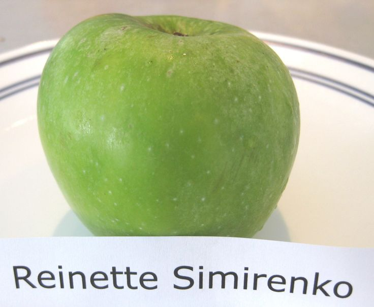 This waxy, medium green apple is called Reinette Simirenko and looks very much like a Granny Smith. It was first described in the 1890's and was actually taken into space by Russian cosmonauts. The flesh is firm and crisp but not as juicy or tart as other varieties. Some sources claim that it originated in the garden of P.F.Simirenko in the Ukraine and others say it is actually the same apple as Wood's Greening which had been described 40 years earlier in North America…