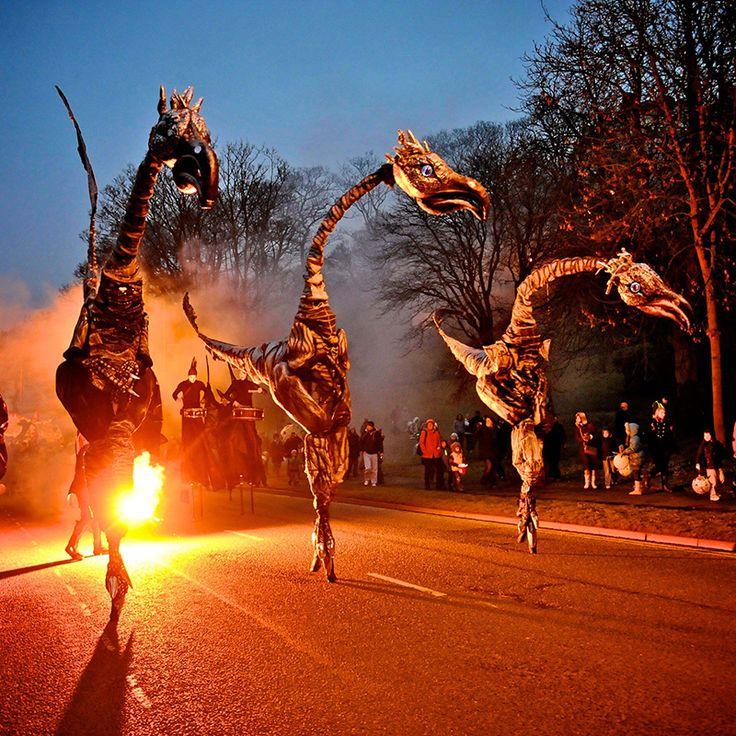 Creat Coastival Dinosaurs