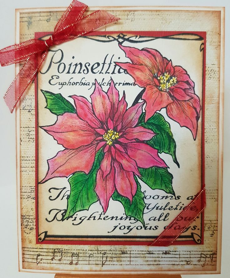 Poinsettia Botanical K3228 by PSX. Card by Susan of Art Attic Studio