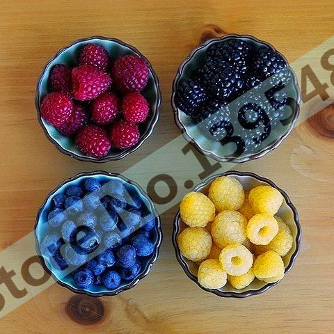 4 tipi di colore 4000 PZ semi di lampone (1000 blu, 1000 nero, 1000 rosso, 1000 giallo) delizioso frutto piante
