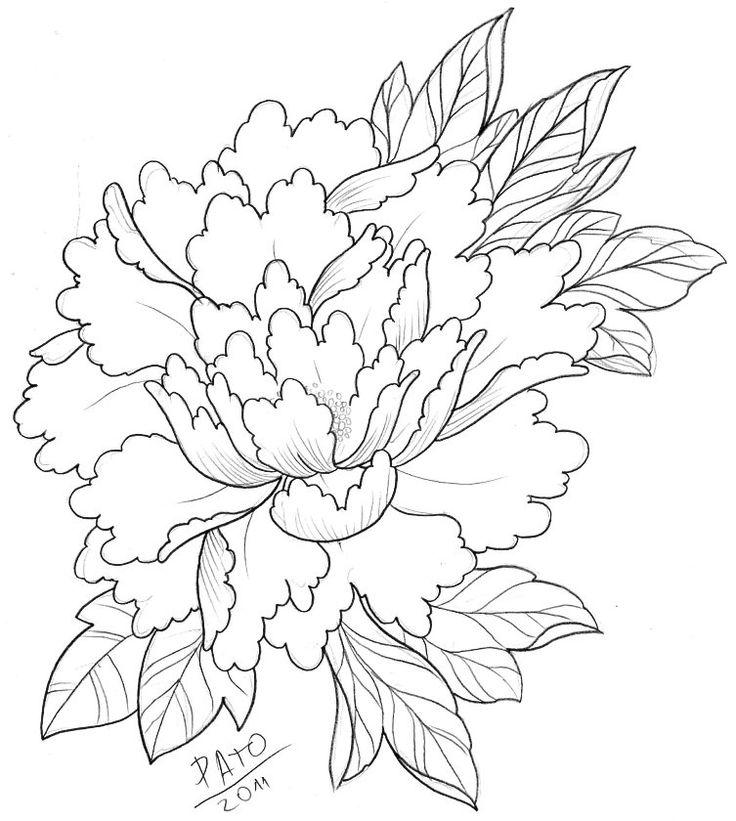 Шикарные хризантемы картинки