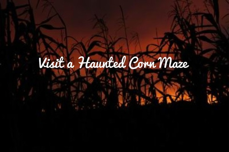 Visit a Haunted Corn Maze ✔ 4 June 2016- Not a corn maze but went through a Horror Maze of zombies, etc at the Wellington Armageddon Expo- Freddy followed me and was running his knives down my back LOL