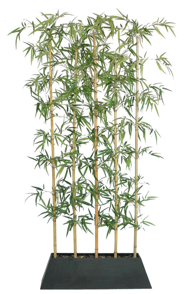 Silks pothos desk top plant in pot amp reviews wayfair - Laura Ashley Home Tall Silk Bamboo Tree Screen In Planter Reviews Wayfair