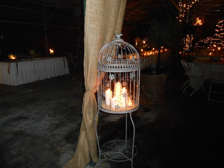 Bird Cage filled with candles and accented with succulents at Callie's Wedding.