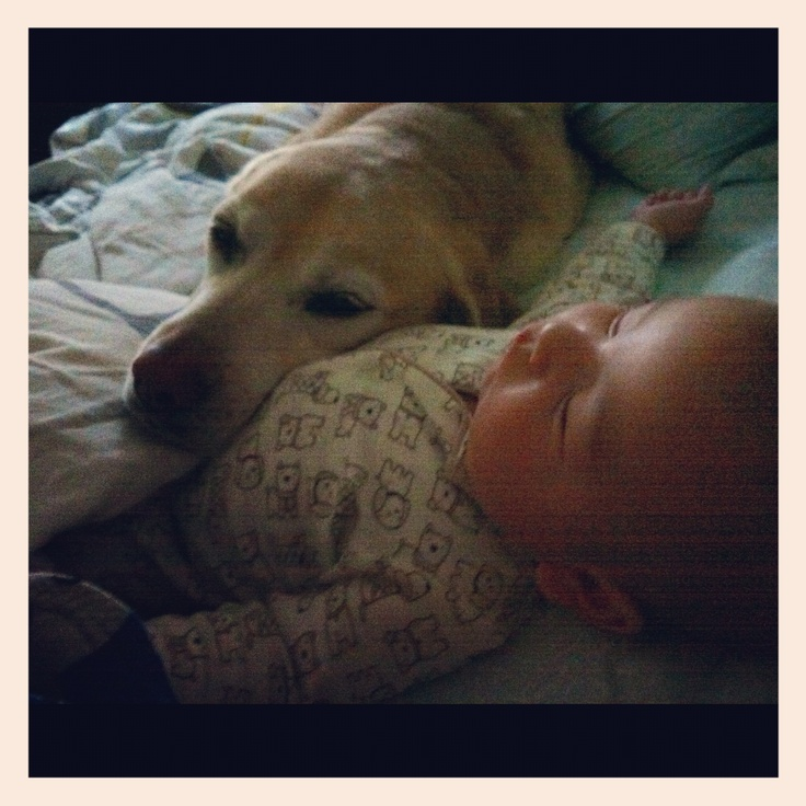 Big sister loves her baby brother. Baby and dog cuteness!: Baby Love, Baby Baby, Baby Brothers