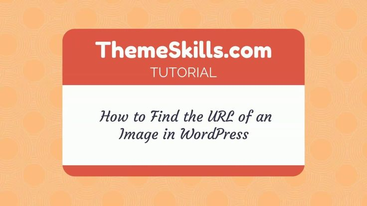 How to Find the URL of an Image in WordPress!