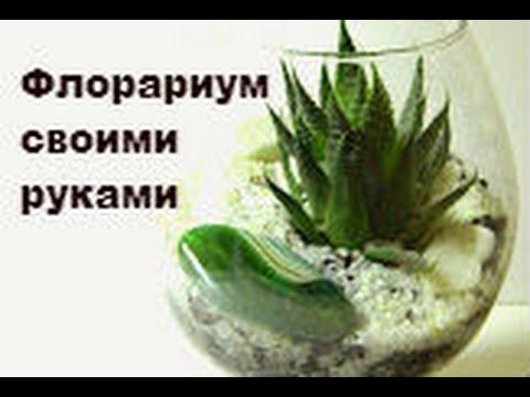 флорариум своими руками - YouTube
