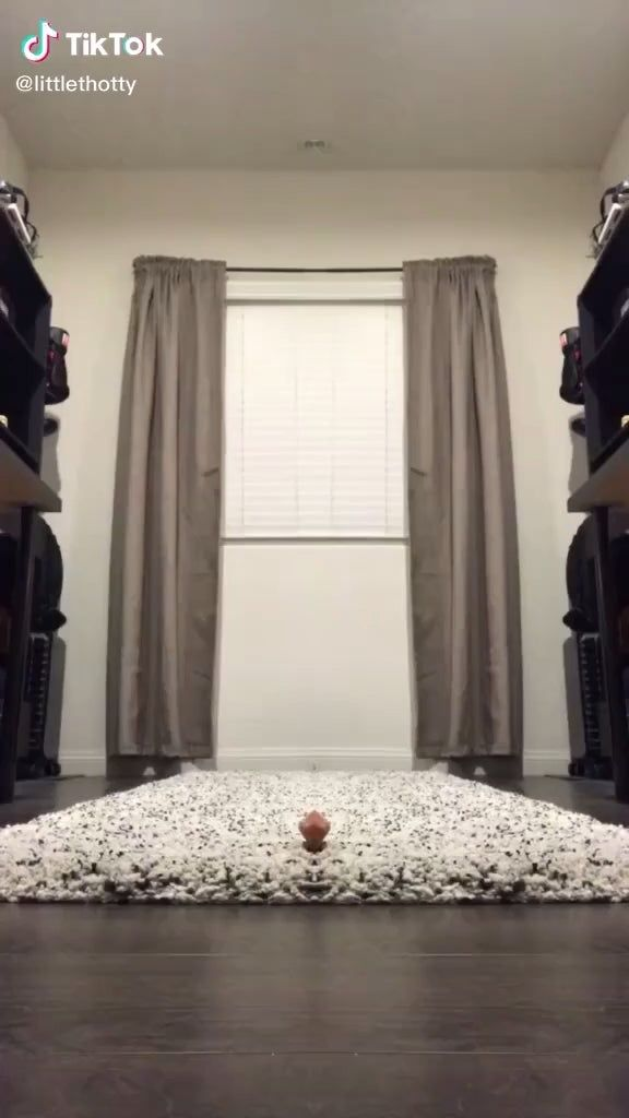 Oddlysatisfying The Exceptional Use Of This Filter Littlethotty On Tiktok Recent Wonderful Picture Home Decor Easy Diy