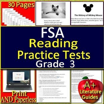 3rd Grade FSA Reading Test Prep Practice Sets - Print and ...