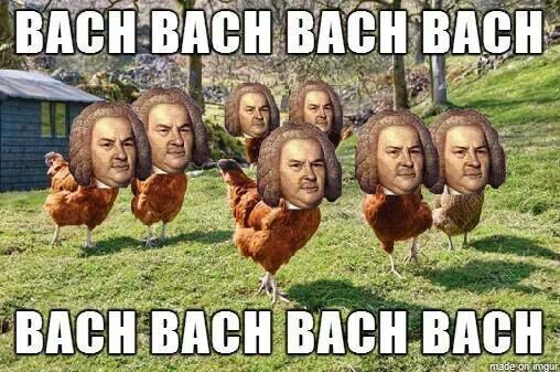 Bach chickens, they DO exist!!
