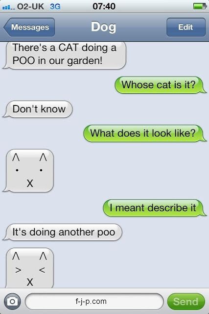 Funny Cat Poo Garden SMS/Text Picture | Funny Joke Pictures
