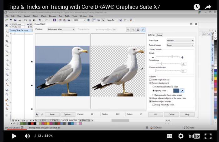 convert pdf to raster online