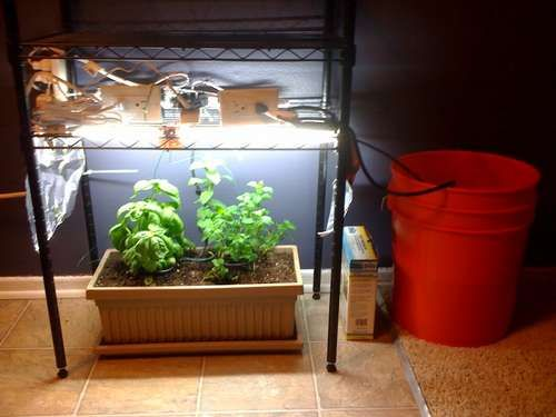 17 Best Images About Arduino Gardening Horticulture On