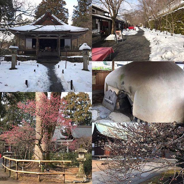 【nakaitaxi_kyoto】さんのInstagramをピンしています。 《中井タクシーの京都観光情報🚕 大原三千院、八瀬竈風呂、北野天満宮の梅をご案内いたしました‼️ #Kyoto #Japan #Shrine #Temple #京都 #社寺 #紅葉 #桜》