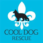 Cool Dog Rescue | Hammonds Plains, NS