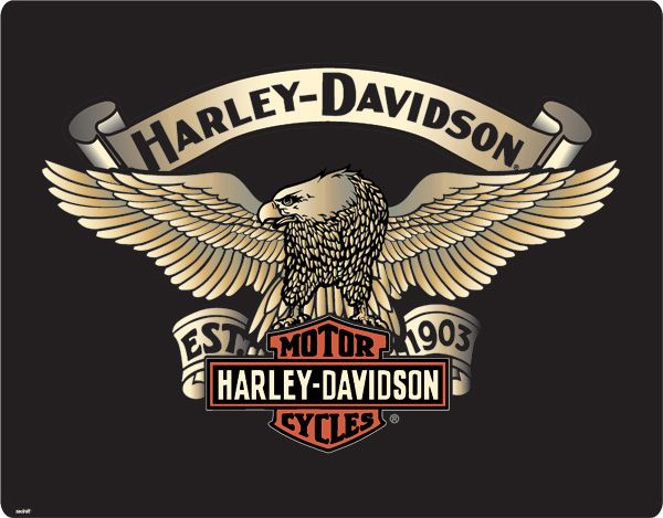 195 Best Images About Harley Davidson On Pinterest Logos