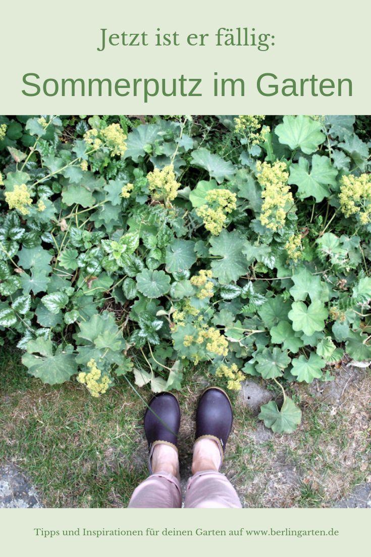 Sommerpflege für den Garten: Rückschnitt, Lücken füllen, düngen