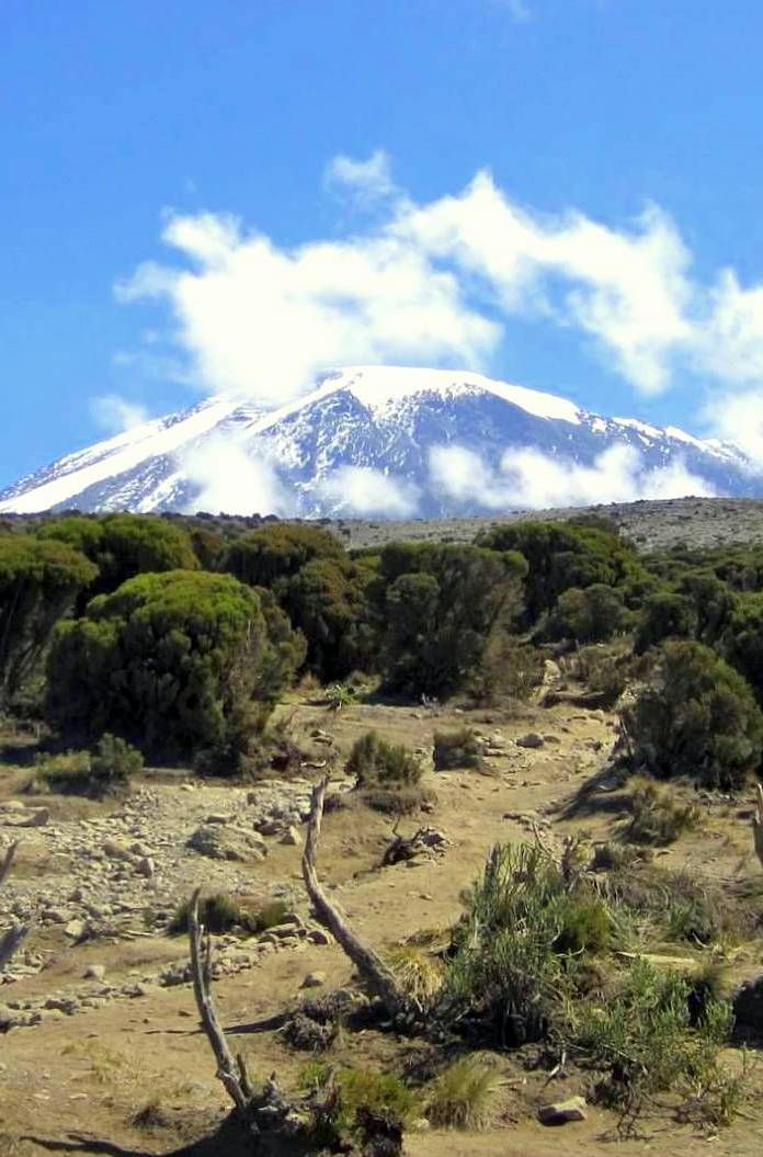 As it turns out, Kilimanjaro is powerful, awe-inspiring, and an experience which inspires transformation. When you stand on the roof of Africa, you see the world in a different way. Click pin for more info.