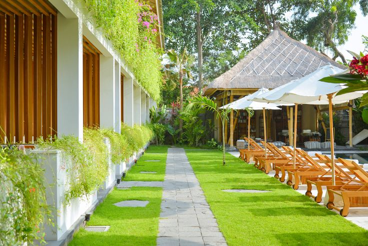 The Open House Bali - Path and gardens along the ground floor rooms and swimming pool.